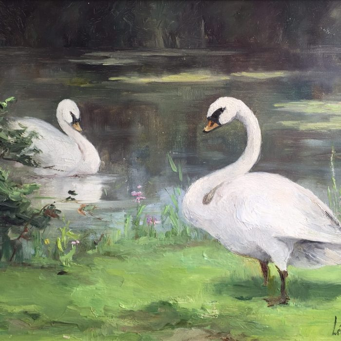 A Pair of Swans