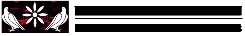 Valentina Safarian Logo
